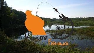 Риболовля на р. Молома