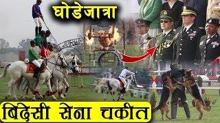 घोडेजात्रामा सेनाको कुकुरले समत्यो अपराधी - नेपाली सेनाको डरलाग्दोदृश्य देखेर बेदेसी सेना चकित