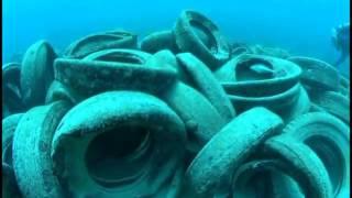 видео Загрязнение вод мирового океана: проблема и причины загрязнения