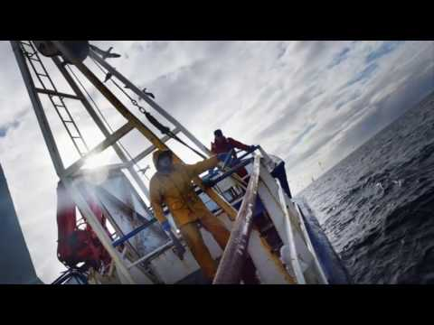 'Deadliest Catch' fishing friends lost in Bering Sea