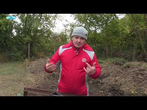 Как повысить плодородие почвы