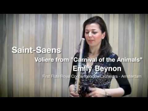 Saint Saens - Voliere from the Carnival of the Animals flute solo demonstrated by Emily Beynon