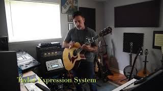 Fishman Rare Earth Humbucking Acoustic pickup comparison