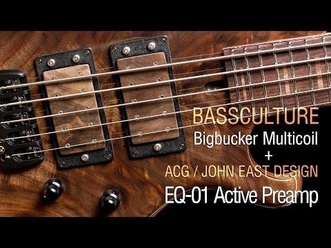 Bassculture Bigbucker + ACG / John East EQ-01 Preamp