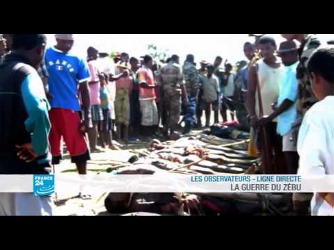 LES OBSERVATEURS LIGNE DIRECTE : Madagascar - La guerre du Zébu