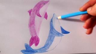 Delfine malen für Kinder - how to draw dolphins for children - как рисовать дельфинов