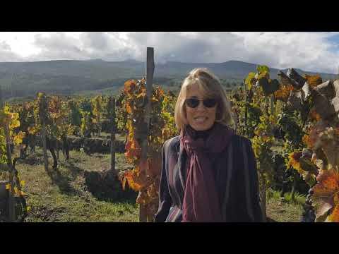 Palmento Costanzo - Valeria Agosta racconta i vini della azienda