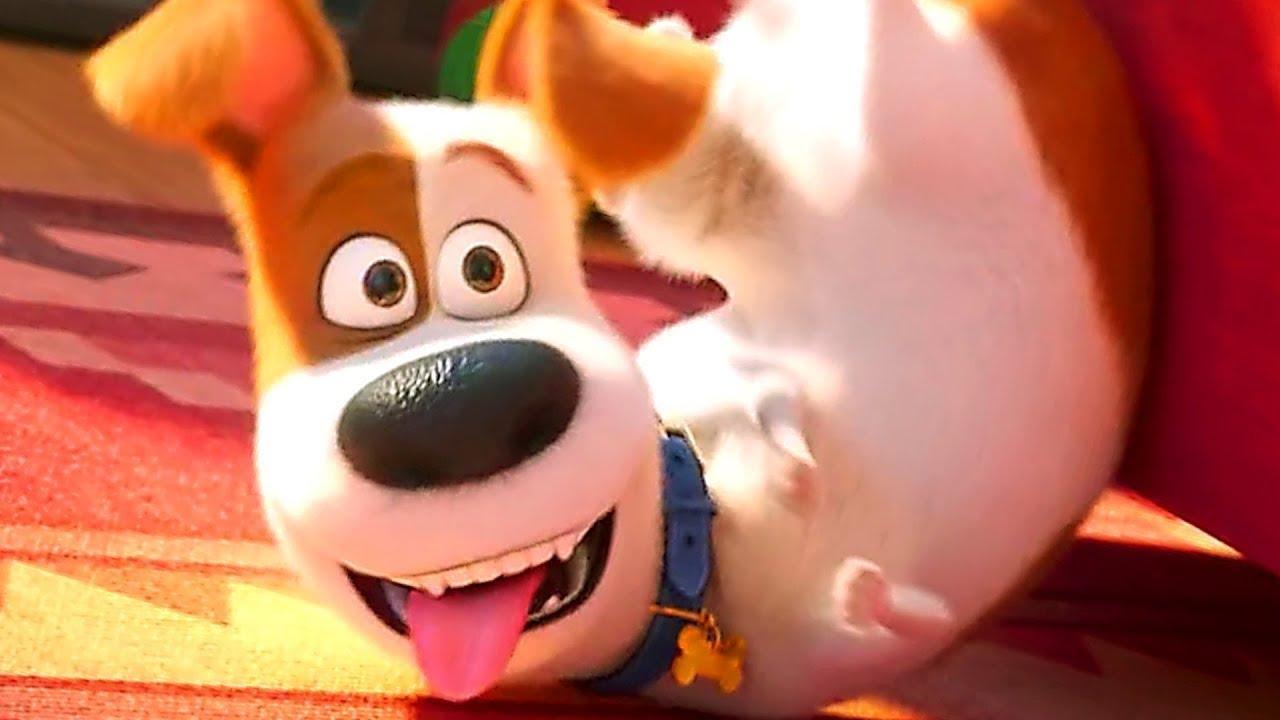 A Vida Secreta Dos Bichos O Filme Completo Dublado pets: a vida secreta dos bichos 2 - trailer hd dublado