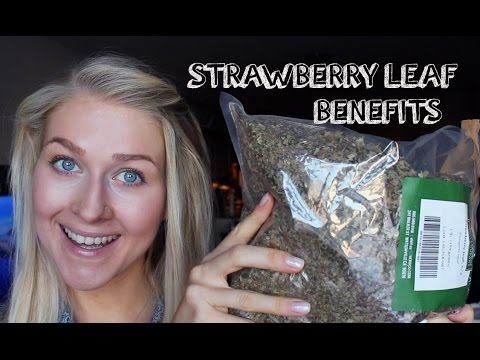 how-to-use-strawberry-leaf-tea-for-health-benefits