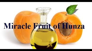 Miracle Fruit of Hunza