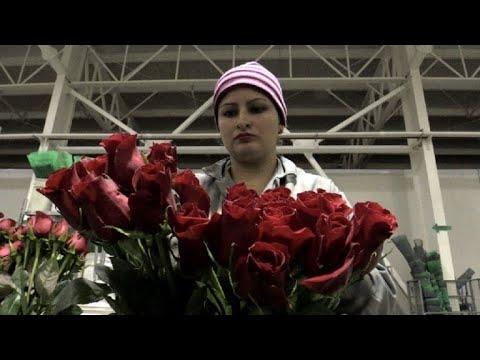 San Valentín, alivio para la crisis en la frontera con Venezuela