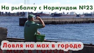 Ловля на маховую удочку в городе : На рыбалку с Нормундом #23(Конец лета - время не самое простое для ловли белой рыбы. Но в городской черте, при наличии большого водоёма..., 2016-09-06T12:32:04.000Z)