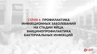 Джавадов Э.Д.: Вакцинация in ovo. Вакцинопрофилактика бактериальных инфекций.