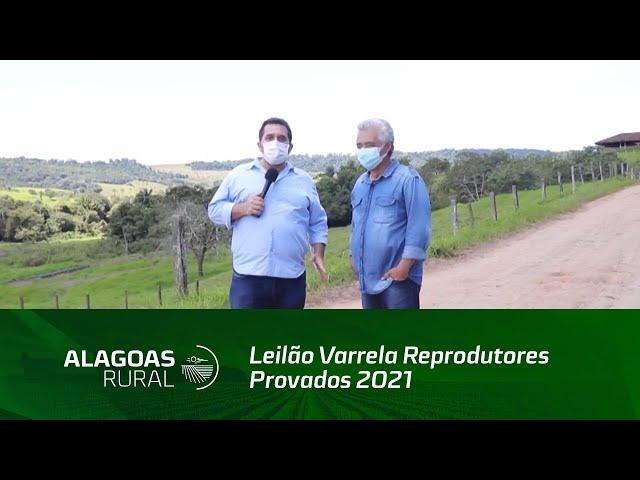 Leilão Varrela Reprodutores Provados 2021 está confirmado