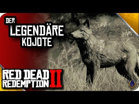 RED DEAD REDEMPTION 2 🐎 Der legendäre Kojote thumbnail