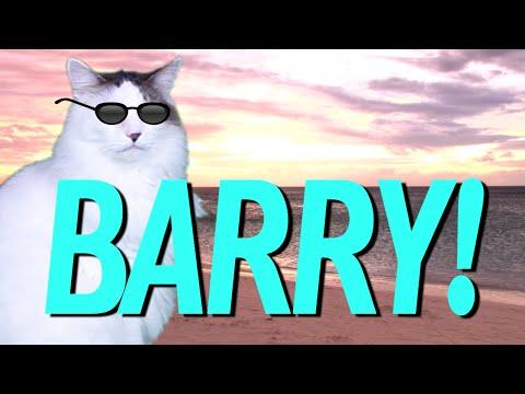 happy birthday barry epic cat happy birthday song youtube