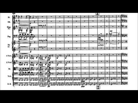 Smetana - The