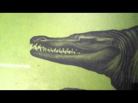 Egoraptor explains Paleontology