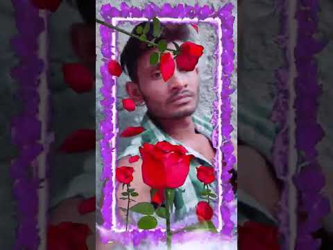Surya Rawat