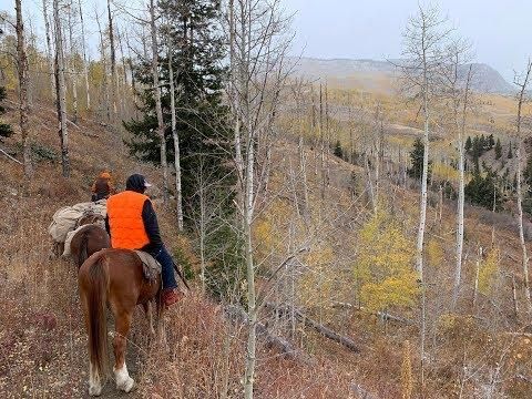 Colorado Flat Tops Wilderness 2019
