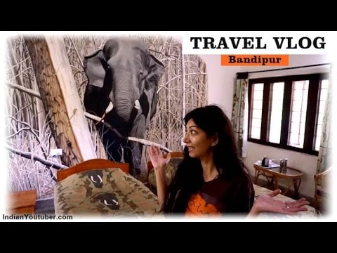 Bandipur Safari Lodge - Indian Travel Youtuber | India Travel