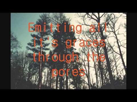 Fineshrine - Purity Ring Lyrics