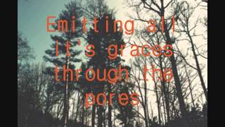 Fineshrine - Purity Ring Lyrics