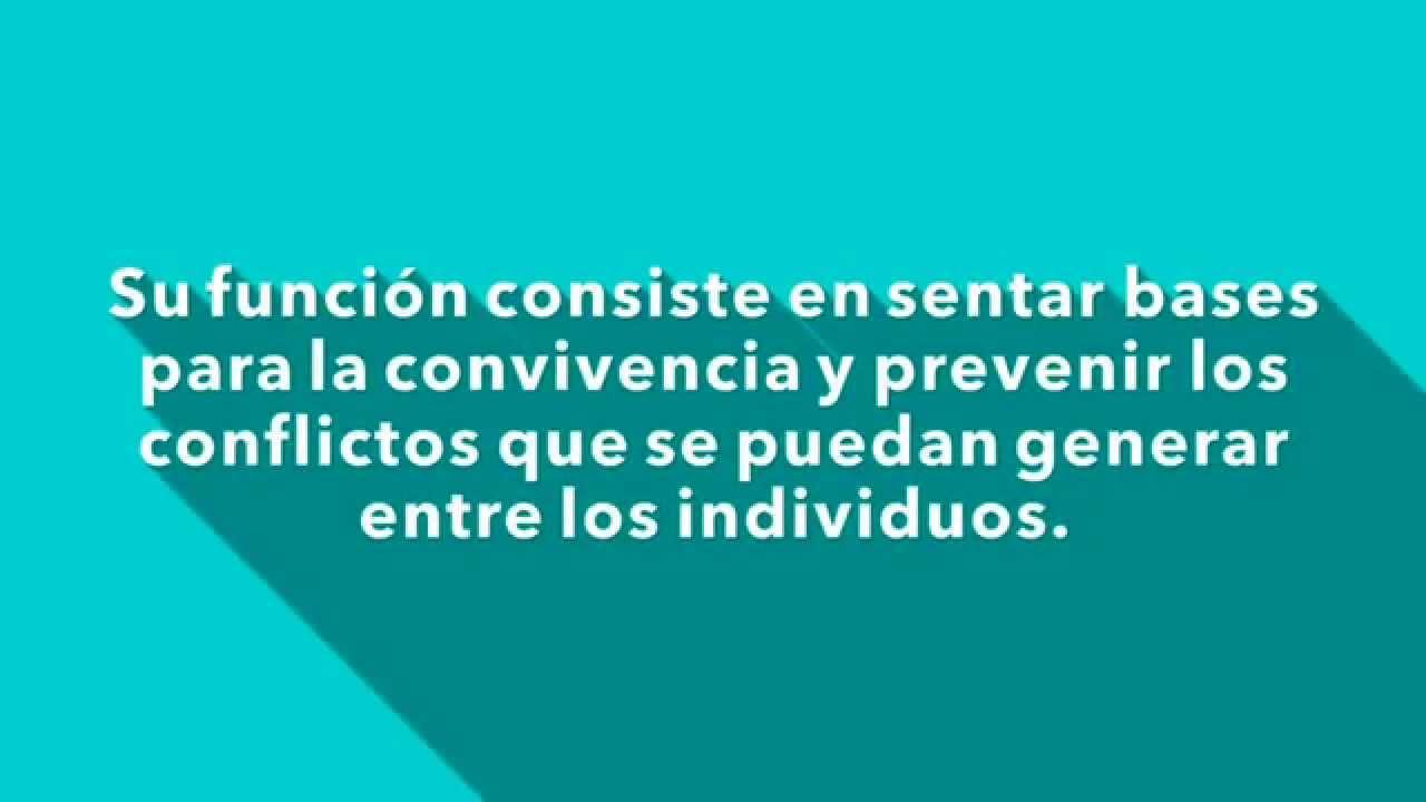 Conceptos de reglamento objetivo apartado derechos for Funcion de un vivero escolar
