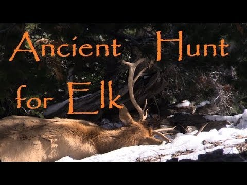 Primitive Bow Hunting For Elk. Traditional / Primitive Archery