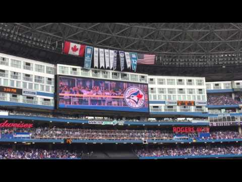 Thumb of Toronto Blue Jays video