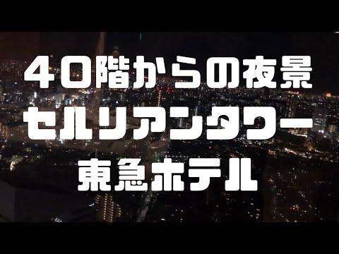 【VLOG】セルリアンタワー東急ホテル「クーカーニョ」でご飯♪