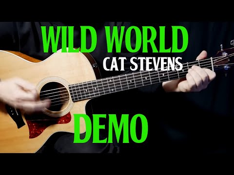 "how to play ""Wild World"" on guitar by Cat Stevens 
