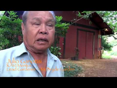 Kokua Aina Youth Initiative KAYI Program at the National Tropical Botanical Garden 2012