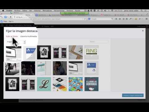 Wordpress Tutorial Español   Proyectos y portfolios con DIVI Wordpress