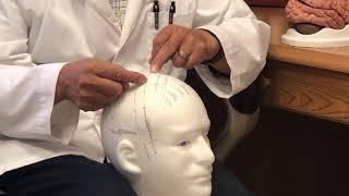 Neuro-Acupuncture Institute