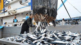 La vida en la pesca del atún Enorme barco en mar abierto