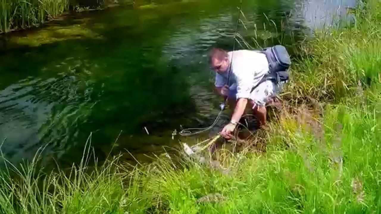 Fly fishing small stream croatia youtube for Small stream fly fishing