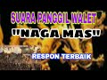 Sp Naga Emas Respon Terbaik  Mp3 - Mp4 Download