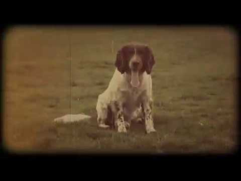 Richard Hawley - My Little Treasures (Official Video)
