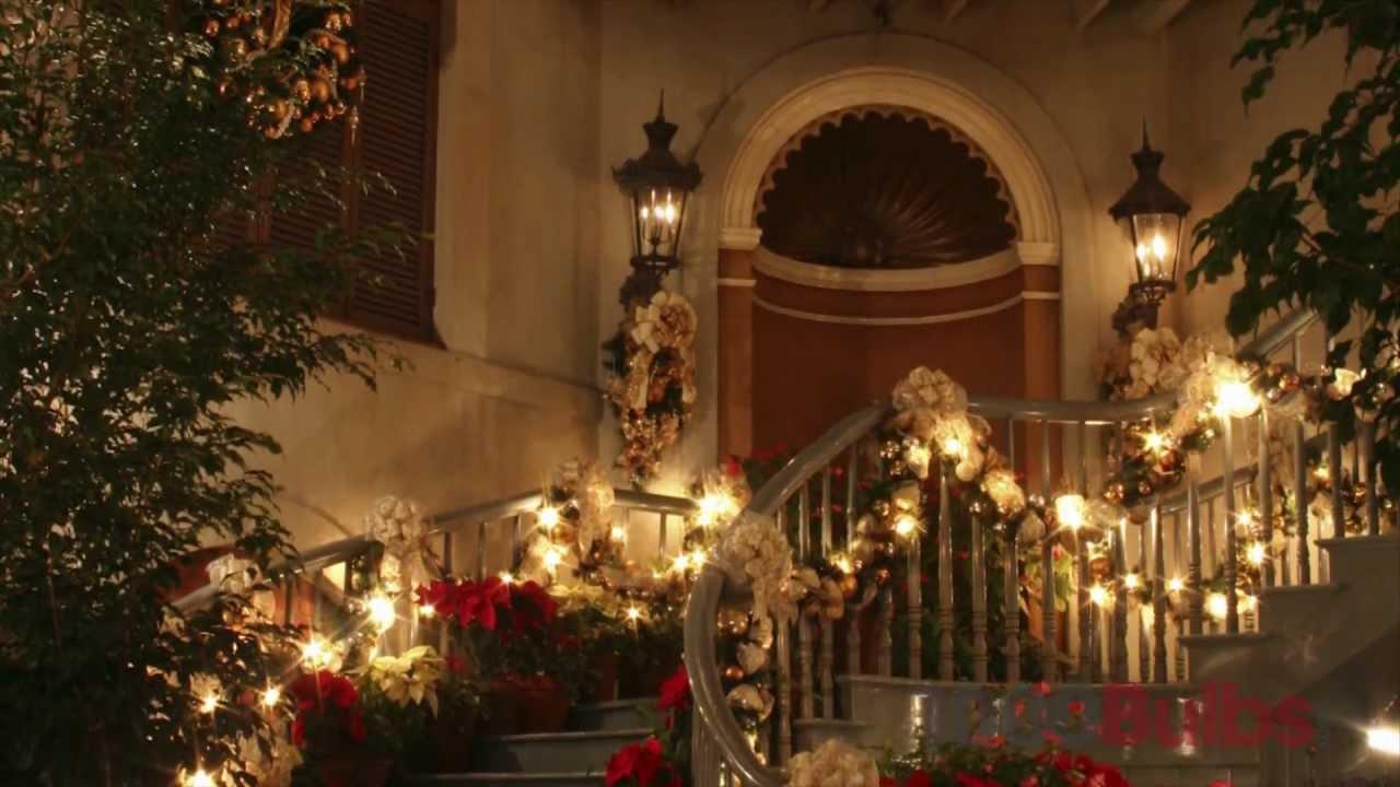 Christmas Lite Co  LED5036YELG - LED Wide Angle Yellow - 50 Lights