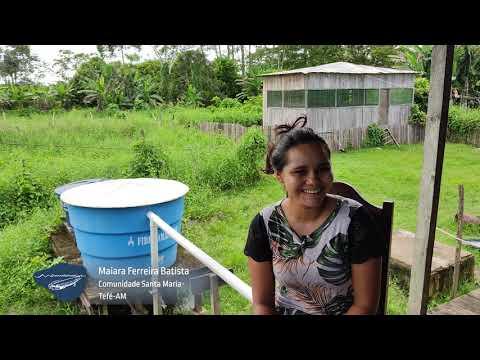Fossa Alta Comunitária: tratamento de esgoto para áreas alagáveis da Amazônia