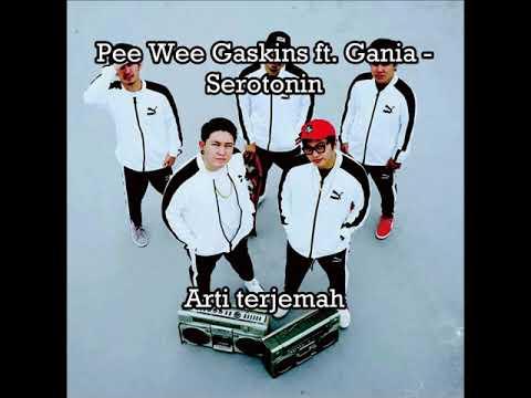 Pee Wee Gaskins Ft. Gania - Serotonin (lirik Terjemah) #musik #Indonesia #galau