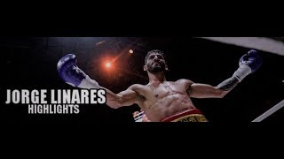 Jorge Linares | The Golden Boy