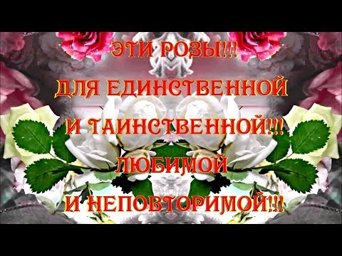 С Днём Рождения!!! Эти Розы!!! Для Единственной и Таинственной!!! Любимой и Неповторимой!!!