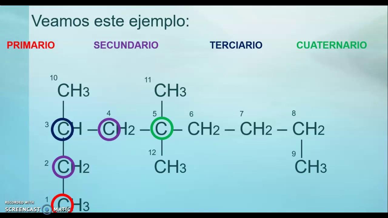 Tipos de carbono, tipos de cadena e isomería - YouTube