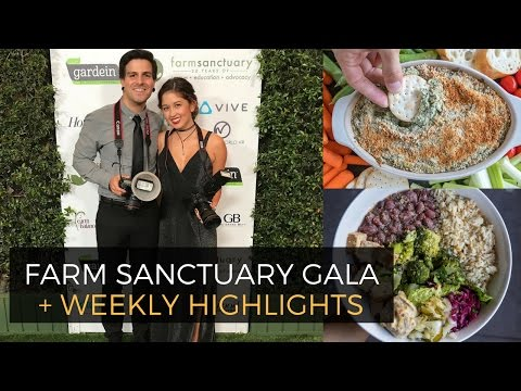 Farm Sanctuary Gala + Our Couples Massage :) | Weekly VLOG