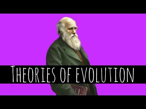 Theories of Evolution - Charles Darwin and Natural Selection - GCSE Biology