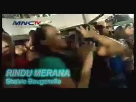 Shelvie Bougenville ~ Top Pop MNCTV