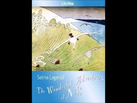 The Wonderful Adventures of Nils by Selma Lagerlöf - 19/45. The Big Birdlake
