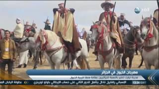 تقرير| الجزائر تقيم مهرجان الخيول السنوي بمدينة تيارت القديمة